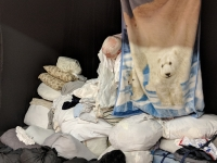 68_polar-bear-lr183807.jpg